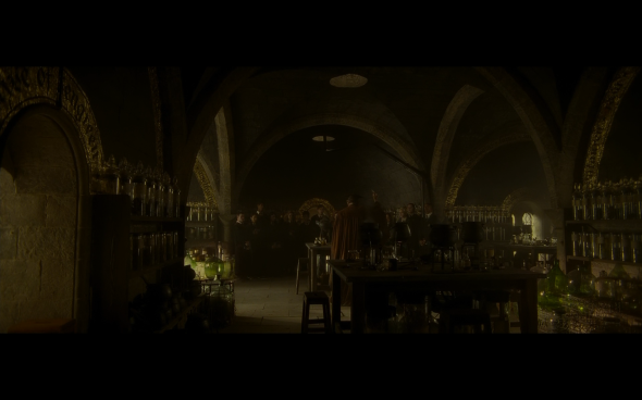 Harry Potter and the Half-Blood Prince - 332