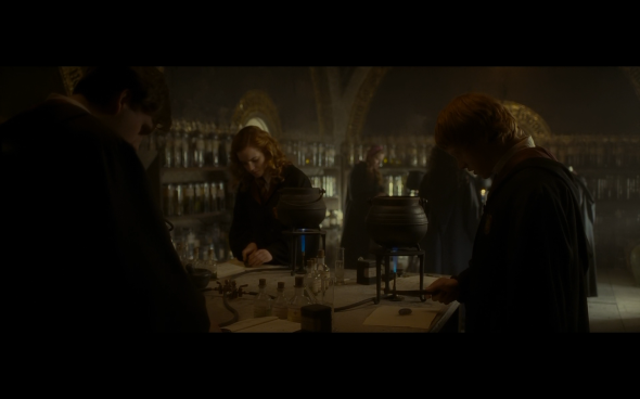Harry Potter and the Half-Blood Prince - 336