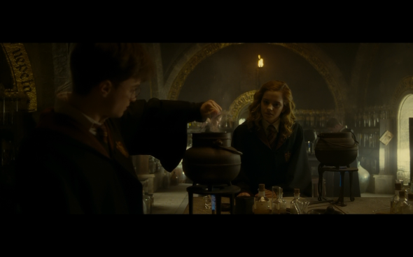 Harry Potter and the Half-Blood Prince - 338