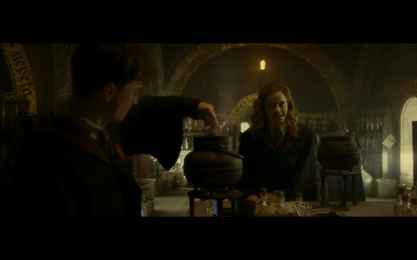 Harry Potter and the Half-Blood Prince - 339