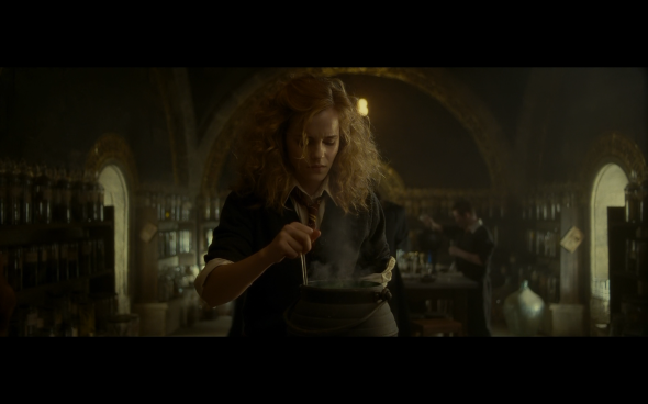 Harry Potter and the Half-Blood Prince - 347