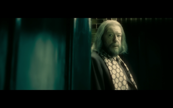 Harry Potter and the Half-Blood Prince - 412