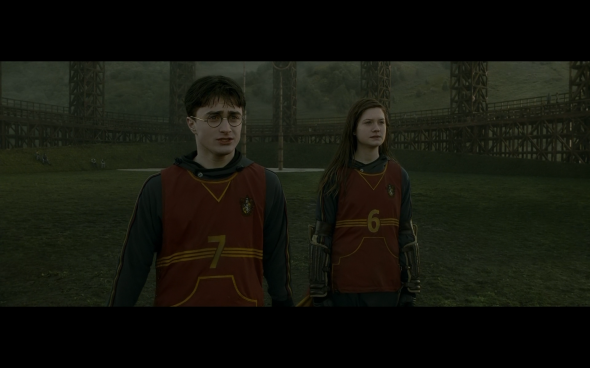 Harry Potter and the Half-Blood Prince - 429