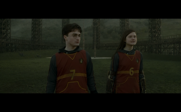 Harry Potter and the Half-Blood Prince - 431