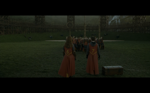 Harry Potter and the Half-Blood Prince - 432
