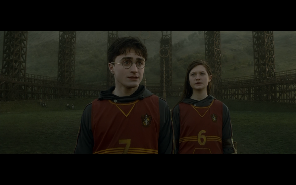Harry Potter and the Half-Blood Prince - 434