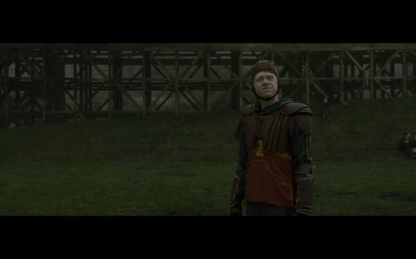 Harry Potter and the Half-Blood Prince - 435