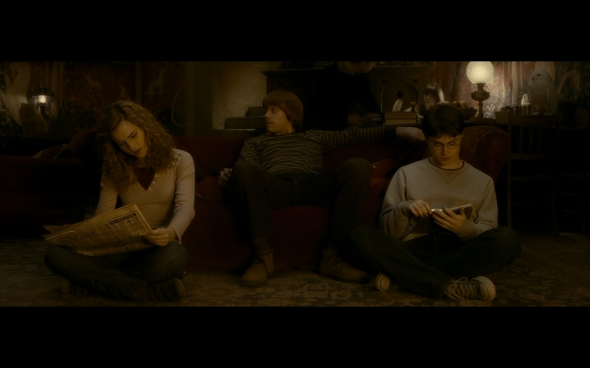 Harry Potter and the Half-Blood Prince - 466