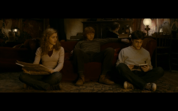 Harry Potter and the Half-Blood Prince - 469