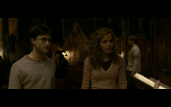 Harry Potter and the Half-Blood Prince - 474