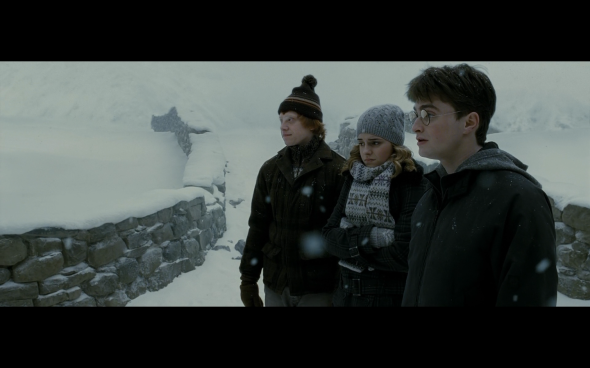 Harry Potter and the Half-Blood Prince - 487