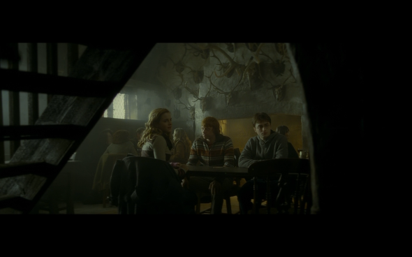 Harry Potter and the Half-Blood Prince - 491