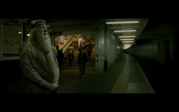 Harry Potter and the Half-Blood Prince - 51
