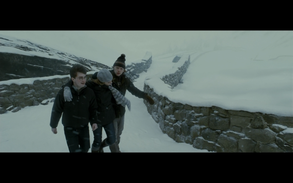 Harry Potter and the Half-Blood Prince - 520