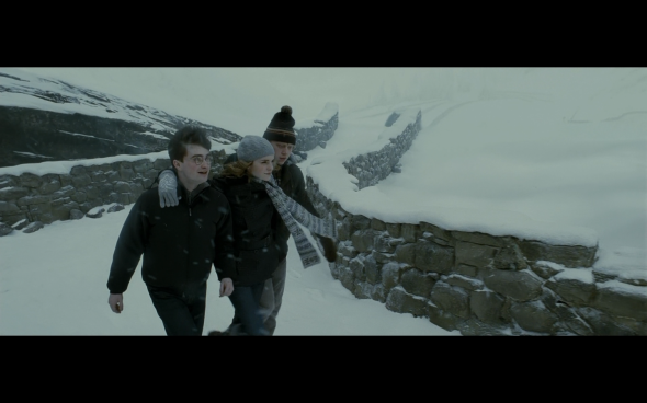Harry Potter and the Half-Blood Prince - 521