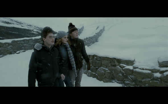 Harry Potter and the Half-Blood Prince - 522