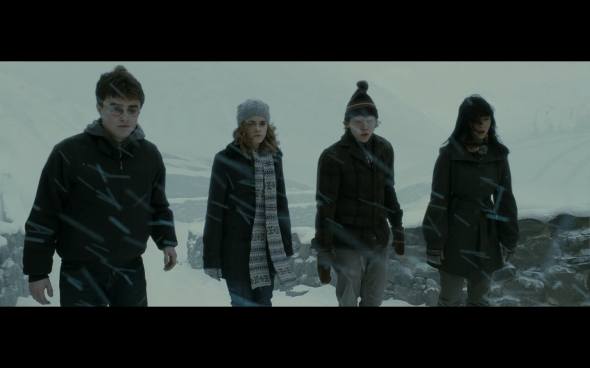 Harry Potter and the Half-Blood Prince - 528