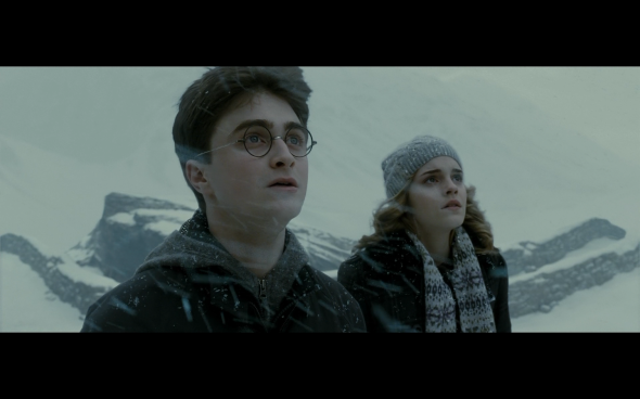 Harry Potter and the Half-Blood Prince - 533