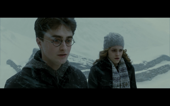 Harry Potter and the Half-Blood Prince - 537