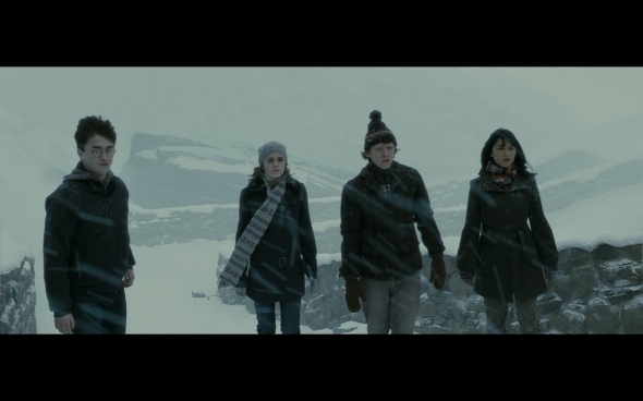 Harry Potter and the Half-Blood Prince - 541
