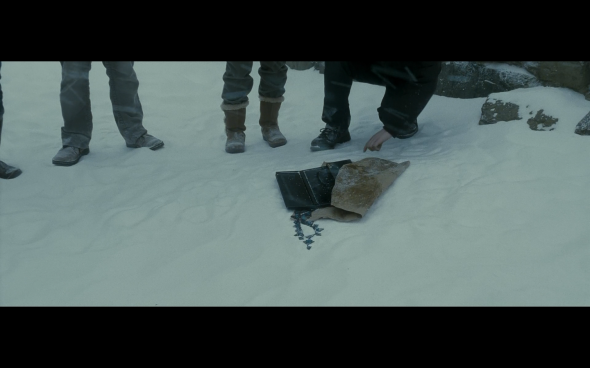 Harry Potter and the Half-Blood Prince - 544