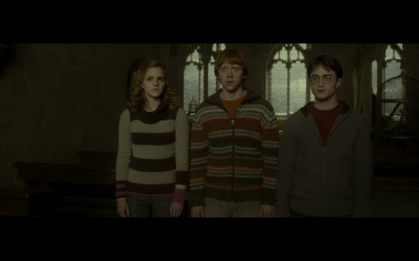 Harry Potter and the Half-Blood Prince - 552