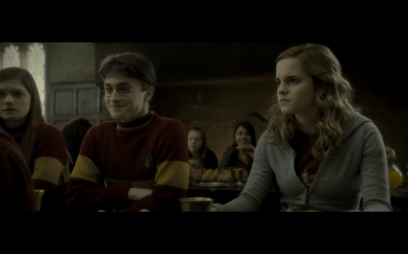 Harry Potter and the Half-Blood Prince - 607