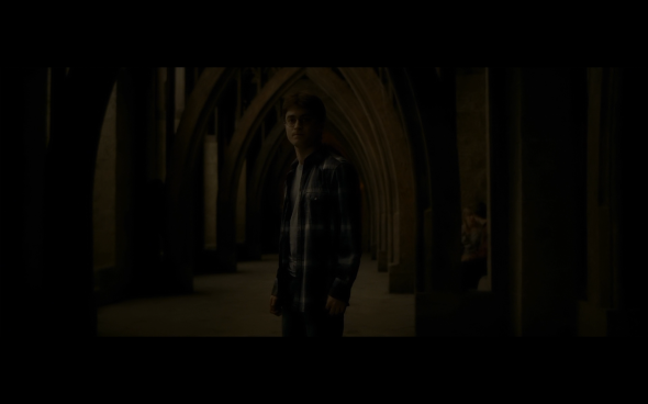 Harry Potter and the Half-Blood Prince - 642