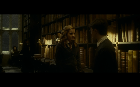 Harry Potter and the Half-Blood Prince - 672