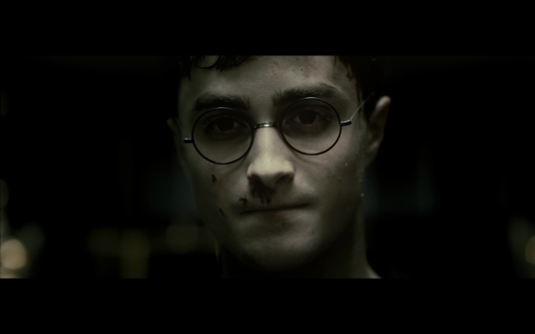 Harry Potter and the Half-Blood Prince - 7