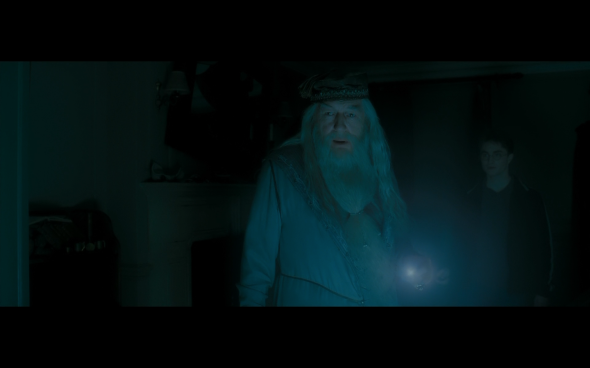 Harry Potter and the Half-Blood Prince - 71
