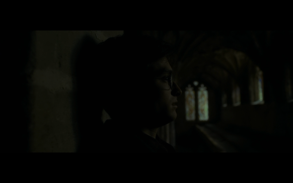 Harry Potter and the Half-Blood Prince - 712