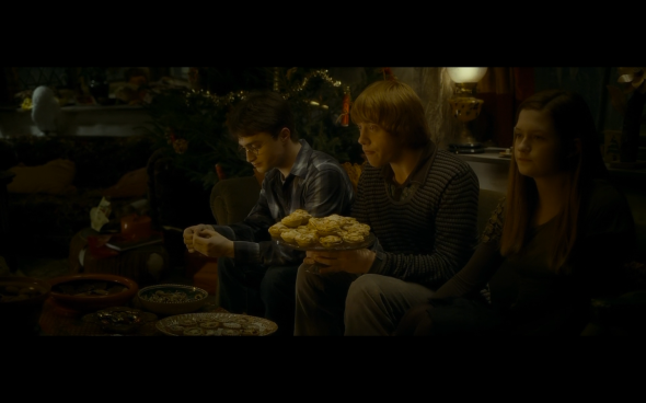 Harry Potter and the Half-Blood Prince - 729