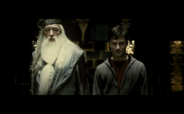 Harry Potter and the Half-Blood Prince - 8