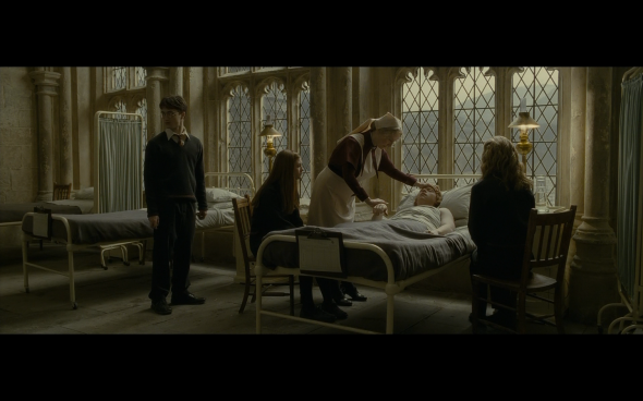 Harry Potter and the Half-Blood Prince - 837