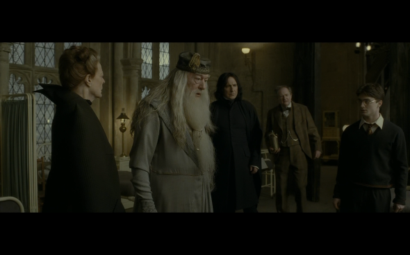 Harry Potter and the Half-Blood Prince - 838