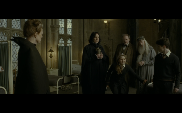 Harry Potter and the Half-Blood Prince - 842
