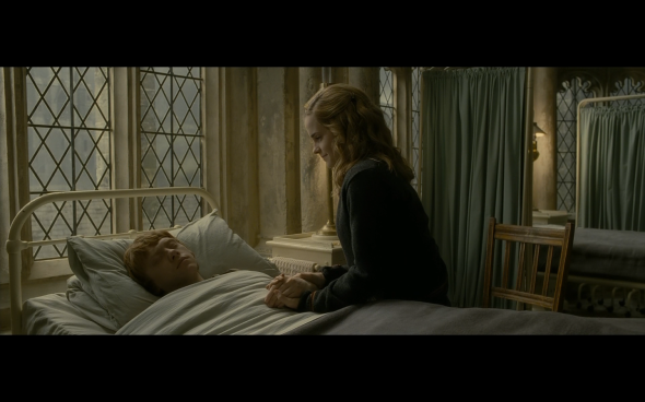 Harry Potter and the Half-Blood Prince - 862