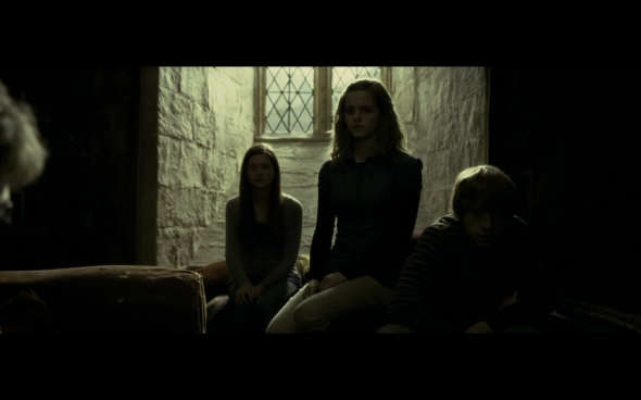 Harry Potter and the Half-Blood Prince - 906
