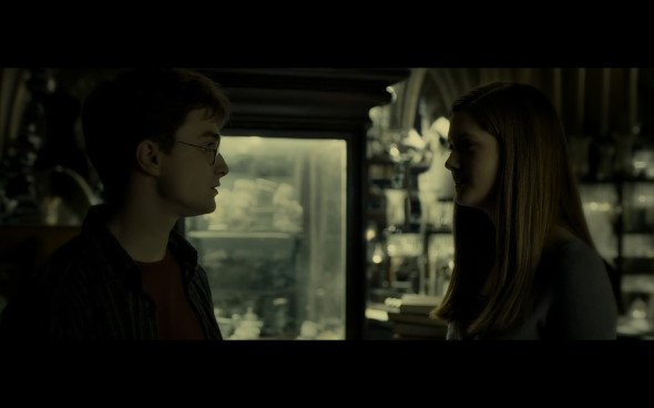 Harry Potter and the Half-Blood Prince - 915