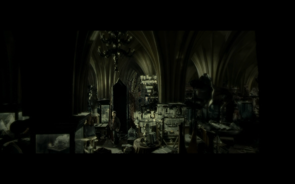 Harry Potter and the Half-Blood Prince - 917