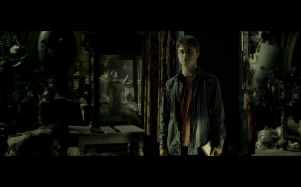 Harry Potter and the Half-Blood Prince - 919