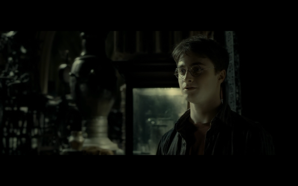 Harry Potter and the Half-Blood Prince - 934