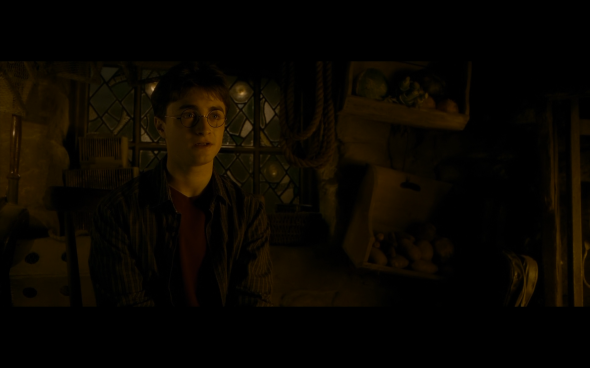 Harry Potter and the Half-Blood Prince - 991