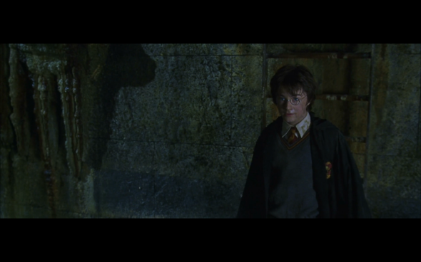 Harry Potter and the Chamber of Secrets - 1008