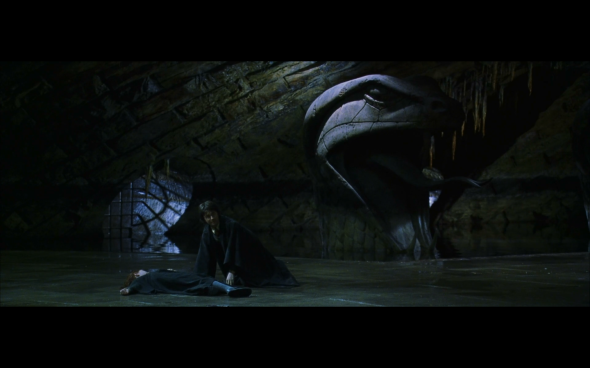 Harry Potter and the Chamber of Secrets - 1019