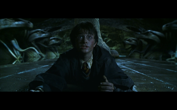 Harry Potter and the Chamber of Secrets - 1059