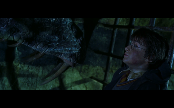 Harry Potter and the Chamber of Secrets - 1073