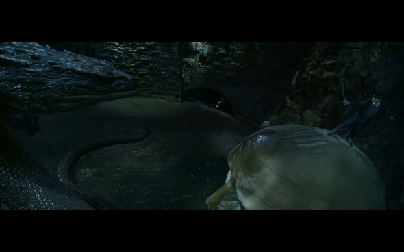 Harry Potter and the Chamber of Secrets - 1089