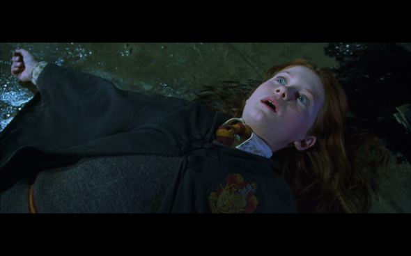 Harry Potter and the Chamber of Secrets - 1117